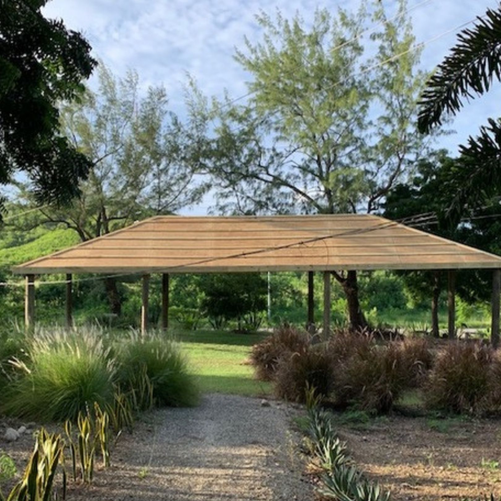 Accessible outdoor space at Agave Gardens